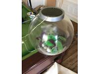 BIORB Fish tank with accessories