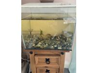 Fluval fish tank 57litres