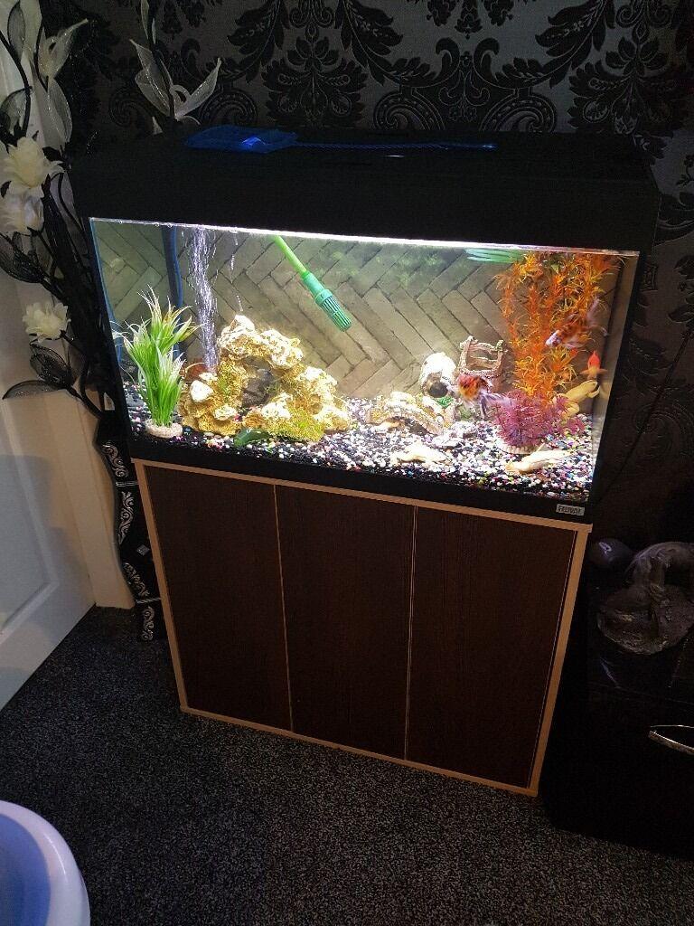 Fish tank 3ft