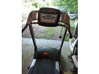 York Treadmill T302