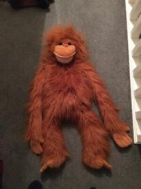 Monkey soft cuddly ventriloquist toy £12