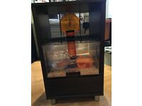 Walnut style Qute gerbil/hamster cage with storage