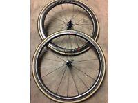 Zipp Carbon wheels