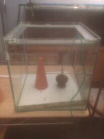 for sale discus breading tank