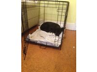 Nearly new large dog crate