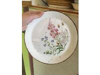 Free! Dinner plates and bowls