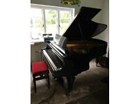 Bluthner Boudoir Grand Piano, Contemporary Black, stunning example