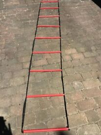 A Set of Mercian Training / Fitness Ladders + Carry Bag