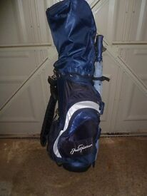 Golf clubs and carrying bag