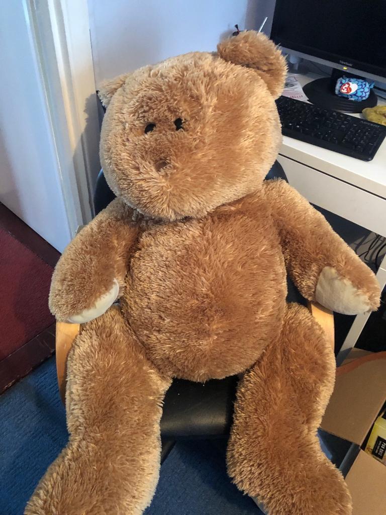 185ee1a979d Giant teddy bear