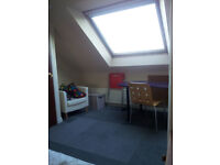 Attic room to let in large quiet house