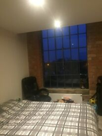 Very Large Double room with Large En suite in converted Factory (penthouse apartment)