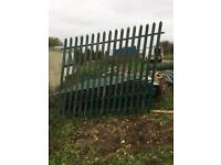Steel security palace fencing