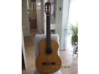 Acoustic guitar - Ideal for a beginner