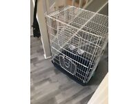 Bird And Parrot Cage For Sale