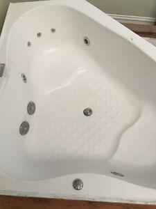 Spa Pump with Bathtub - needs good home - Make an offer Randwick Eastern Suburbs Preview