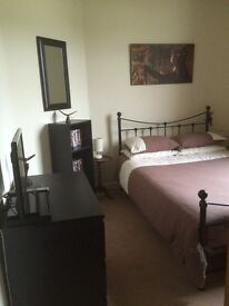 Double Room to rent in family home in Musselburgh near Edinburgh . Short term only. £25 per night