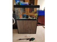 Large 180 litre fish tank with stand and extras!