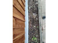 Free soil in becrotree