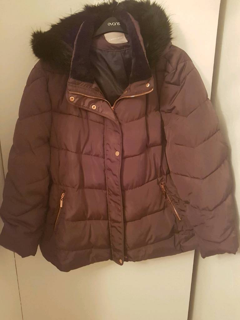 3 x ladies padded jackets size 28- all immaculate condition