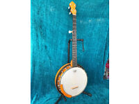 "Woodtone ""Eclipse"" hand made 5 string banjo built by Helmut Rheingans"