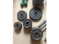 job lot gym bar weight exercise body building