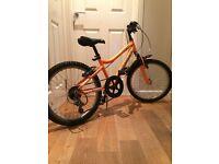 Ridgeback MX20 boys mountain bike Excellent condition