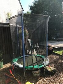 Trampoline free to a good home