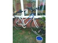 Sports bike ladies Raleigh pioneer collection Wymondham