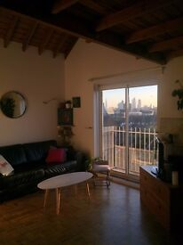 1 bed flat for rent next to Victoria Park with amazing views over London