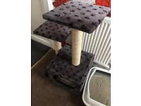 Cat scratch post/bed
