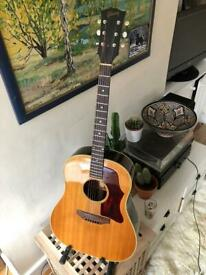 Beloved Gibson j50 1965