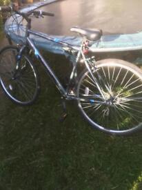 Appolo men's Bike