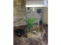 Fish R Fun Hexagonal Fish Tank