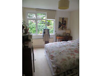 STILL AVAILABLE! Short-Term Let (1month) Lovely 1 bedroom flat with Garden to rent for month of JULY