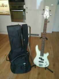 Bass guitar kit for beginner