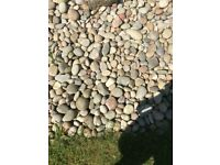 Free Garden Pebbles - Collection only