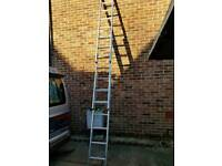 Triple compact ladder