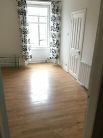 Lovely Bright upgraded 1 Bedroom flat on Inchaffray Street Perth