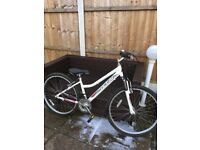 Ladies 26 Inch White Terrain Active Mountain Bike