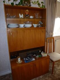 Wall SIDE UNIT wooden with cupboard and shelves