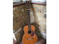 Tanglewood Acoustic Guitar, TW40-PAN, lovely tone, great condition