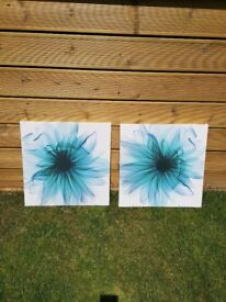 X2 Canvas Pictures