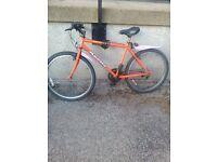 Apollo men's bike for sale