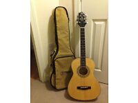 Tennessee TravelerTT65 Greg Bennett design guitar in immaculate condition, with a padded carry case.