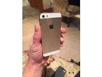 White/gold iphone 5 s