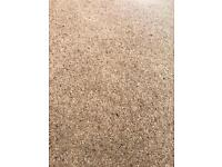 Brand new carpet