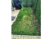 Decking. Help me create a small deck in the Garden. Landscape. Northolt UB5