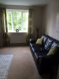 3 SEATER LEATHER SOFA QUICK SALE NEED TO GO ASAP IN GOOD CONDITION