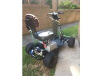 Powerhouse golf buggy
